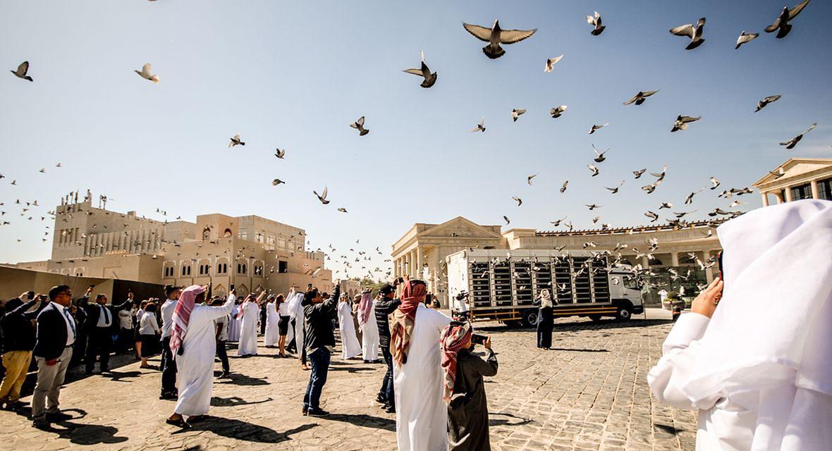 Wspólny lot gołębi w Doha
