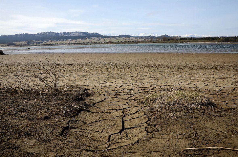 Bardzo niski stan wody w Jeziorze Czorsztyńskim