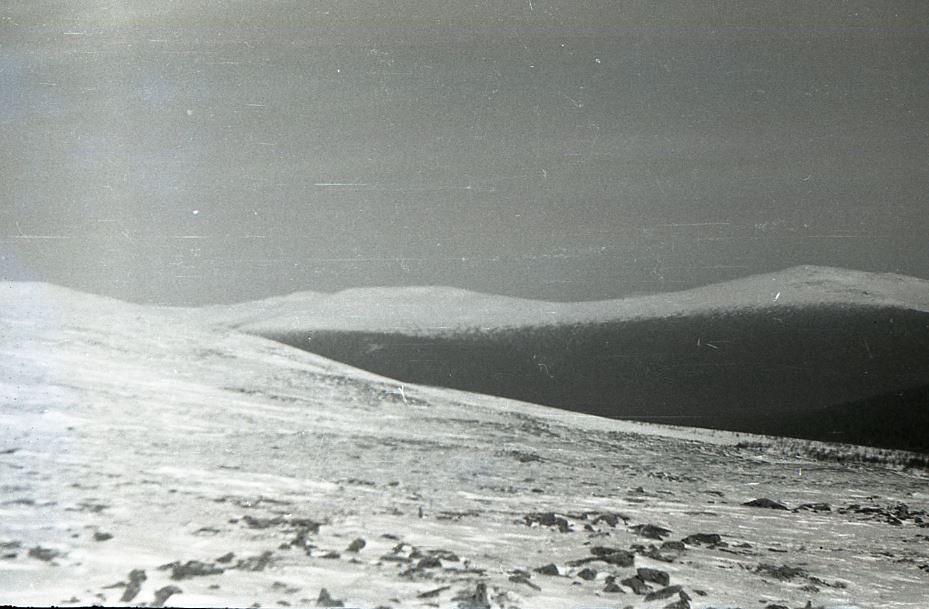 Miejsce rozbicia namiotu. Fotografia z akt śledczych // fot. Fundacja Pamięci Grupy Diatłowa